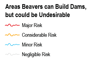Legend_BRAT Management Areas Beavers Can Build Dams, but Could Be Undesirable